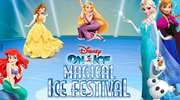Disney On Ice Meet The Characters And Crew